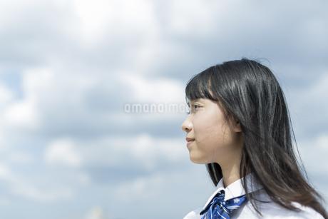 笑顔の女子学生の写真素材 [FYI01733718]