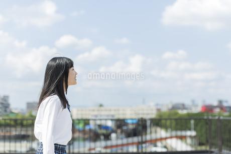 笑顔の女子学生の写真素材 [FYI01733727]