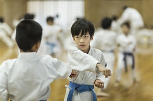 空手の稽古をする子供たちの写真素材 [FYI01733729]
