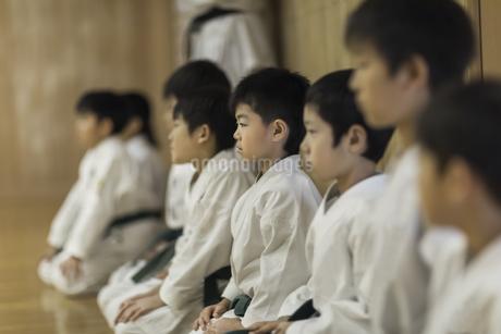 空手の稽古中の子供たちの写真素材 [FYI01733739]