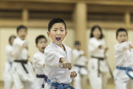 空手の稽古をする男の子の写真素材 [FYI01733747]