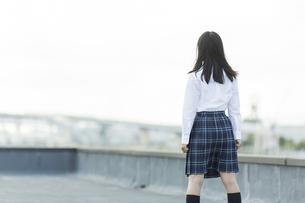屋上に立つ女子学生の後姿の写真素材 [FYI01733766]