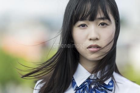 真剣な表情の女子学生の写真素材 [FYI01733772]