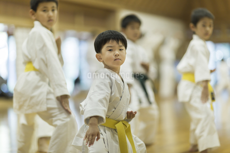 空手の稽古をする子供たちの写真素材 [FYI01733777]