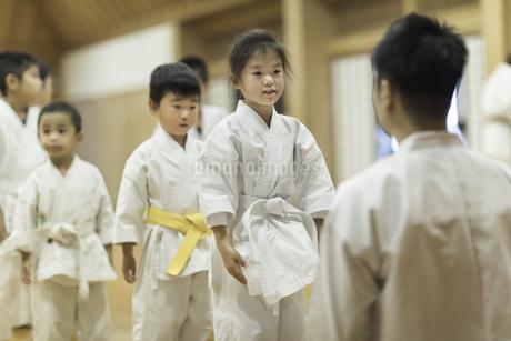 空手の稽古中の子供たちの写真素材 [FYI01733814]