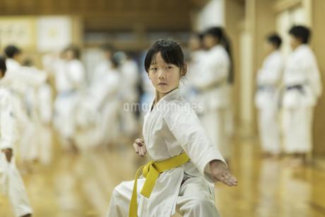 空手の稽古をする女の子の写真素材 [FYI01733820]