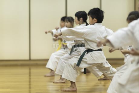 空手の稽古をする子供たちの写真素材 [FYI01733888]