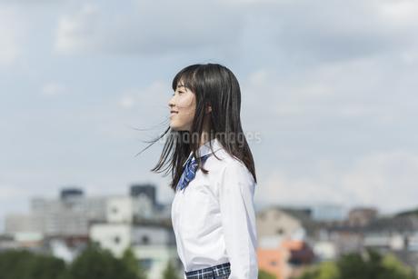 笑顔の女子学生の写真素材 [FYI01733996]