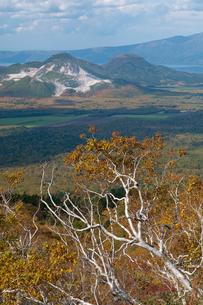 川湯硫黄山とダケカンバ紅葉の写真素材 [FYI01734073]