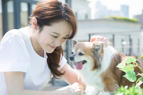 屋外で犬を撫でる笑顔の30代女性の写真素材 [FYI01734126]