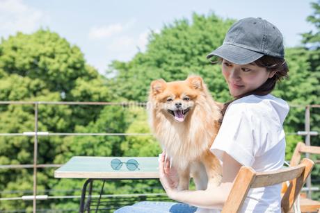 屋外のカフェで飼い犬を抱きかかえる女性の写真素材 [FYI01734424]