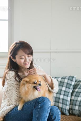 飼い犬を撫でる笑顔の30代女性の写真素材 [FYI01734602]