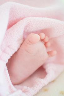 赤ちゃんの足の写真素材 [FYI01734613]