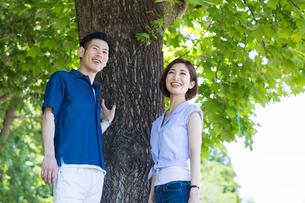 木の下で笑う20代30代カップルの写真素材 [FYI01734634]