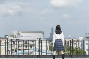 屋上に立つ女子学生の後姿の写真素材 [FYI01734766]