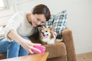 飼い犬と自撮りをする笑顔の30代女性の写真素材 [FYI01734867]