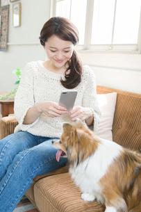 飼い犬の写メを撮る笑顔の30代女性の写真素材 [FYI01734873]