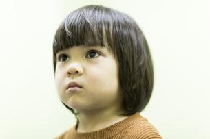 男の子の写真素材 [FYI01734961]