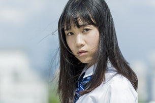 真剣な表情の女子学生の写真素材 [FYI01735839]