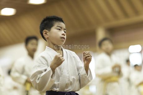 空手の稽古をする男の子の写真素材 [FYI01736025]