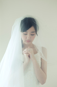 ヴェールを被ったウエディングドレス姿の20代女性の写真素材 [FYI01736992]