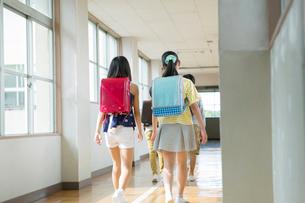廊下を歩く小学生達の後ろ姿の写真素材 [FYI01737710]