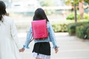 ランドセルを背負う女子小学生の後ろ姿の写真素材 [FYI01737879]