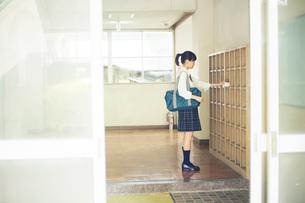 下駄箱に靴を入れる女子高校生の写真素材 [FYI01737941]