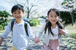 桜の木の下を歩く笑顔の小学生男女の写真素材 [FYI01738961]