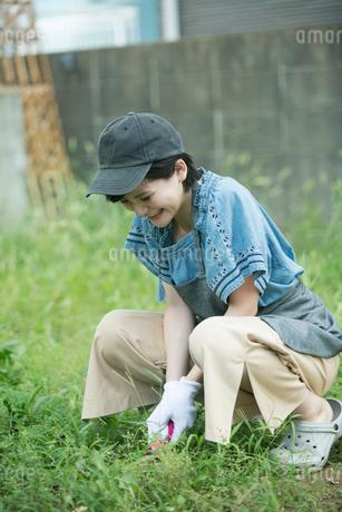 外で庭作業をする笑顔の20代女性の写真素材 [FYI01738999]