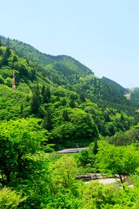 秋田新幹線スーパーこまちと新緑の写真素材 [FYI01739379]