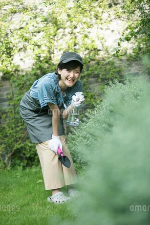 庭の植物に水をあげる20代女性の写真素材 [FYI01739430]