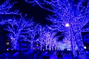 青の洞窟 SHIBUYAの写真素材 [FYI01739743]