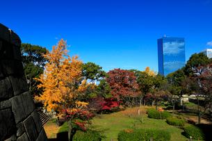 紅葉の大阪城公園から望むビジネスパークの写真素材 [FYI01739952]