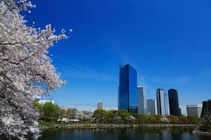大阪城公園の桜とビジネスパークの写真素材 [FYI01740549]