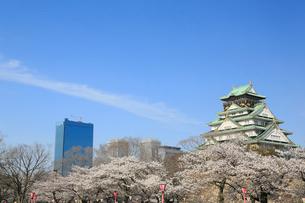 大阪城公園の桜とビジネスパークの写真素材 [FYI01740710]
