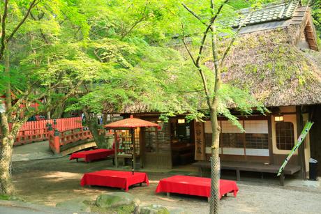 奈良 水谷茶屋の写真素材 [FYI01740769]