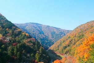 嵐山公園から望む紅葉した京都嵐山と保津川の写真素材 [FYI01740904]
