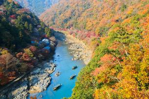 嵐山公園から望む紅葉した京都嵐山と保津川の写真素材 [FYI01741351]