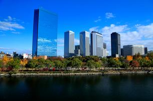 紅葉の大阪城公園から望むビジネスパークの写真素材 [FYI01741461]