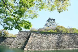 初夏の大阪城公園の写真素材 [FYI01741562]