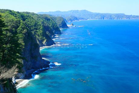夏の鵜の巣断崖の写真素材 [FYI01741606]