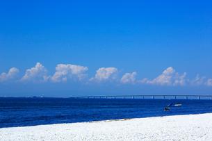 りんくう公園,マーブルビーチと夏の入道雲の写真素材 [FYI01741998]
