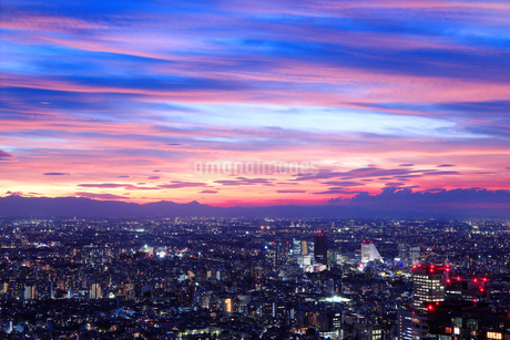 東京都庁展望室から望む東京の夜景の写真素材 [FYI01742004]