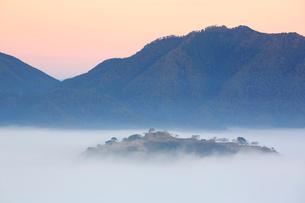 竹田城跡の雲海の写真素材 [FYI01742078]