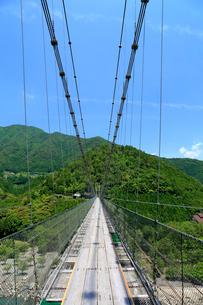 奈良県 新緑の谷瀬の吊り橋の写真素材 [FYI01742120]