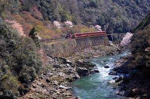 春の保津峡とトロッコ列車の写真素材 [FYI01742405]