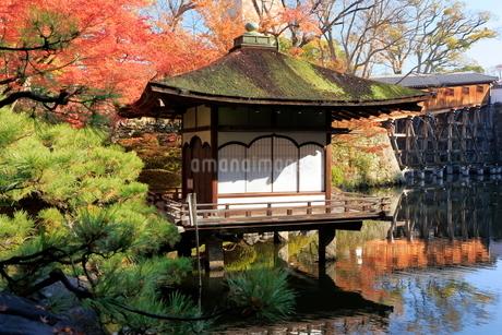 西之丸庭園 紅葉渓庭園の紅葉の写真素材 [FYI01742441]
