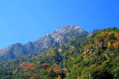 三重県 御在所岳の紅葉の写真素材 [FYI01742465]