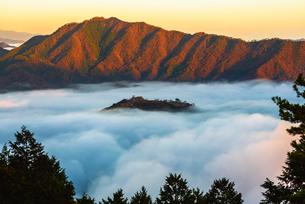 竹田城の雲海の写真素材 [FYI01742677]
